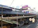 イオン 京橋店(ショッピングセンター/アウトレットモール)まで220m