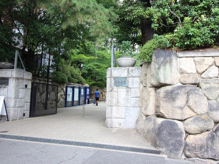 甲南大学(大学/短大/専門学校)まで1060m