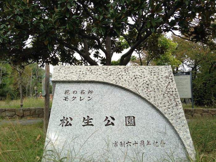 松生公園(公園)まで700m