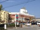 イズミヤ(ショッピングセンター/アウトレットモール)まで1000m