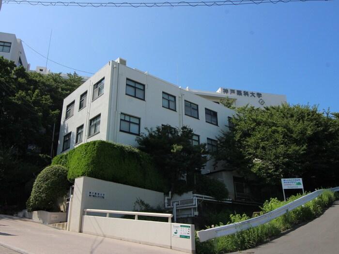 神戸薬科大学(大学/短大/専門学校)まで1200m