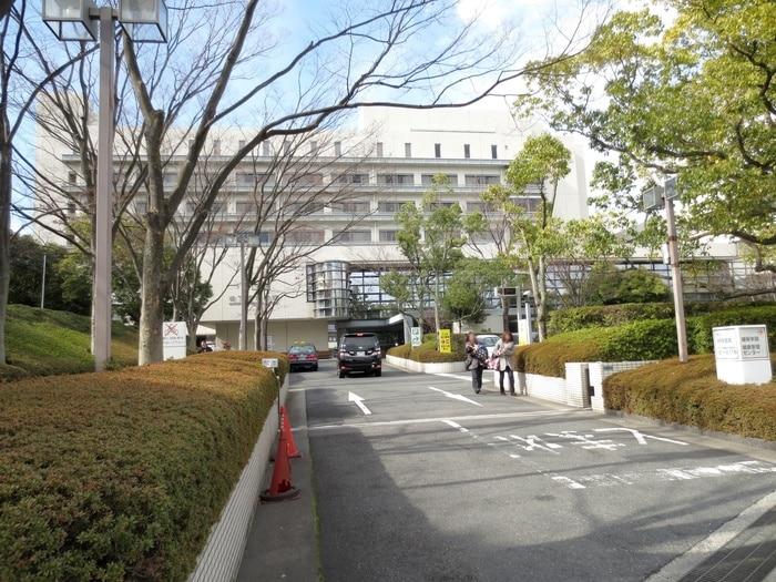 松下記念病院(病院)まで618m