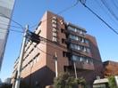 河内総合病院(病院)まで190m