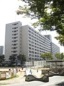 千鳥橋1号棟の外観