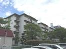 梅ヶ丘南住宅A-6-203号の外観