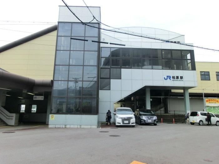 柏原駅(役所)まで810m