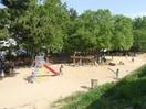 樋之池公園(公園)まで880m
