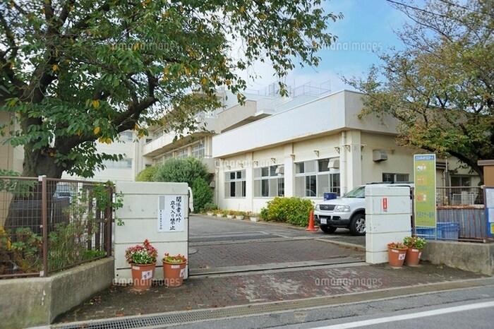 加古川市立若宮小学校(小学校)まで450m
