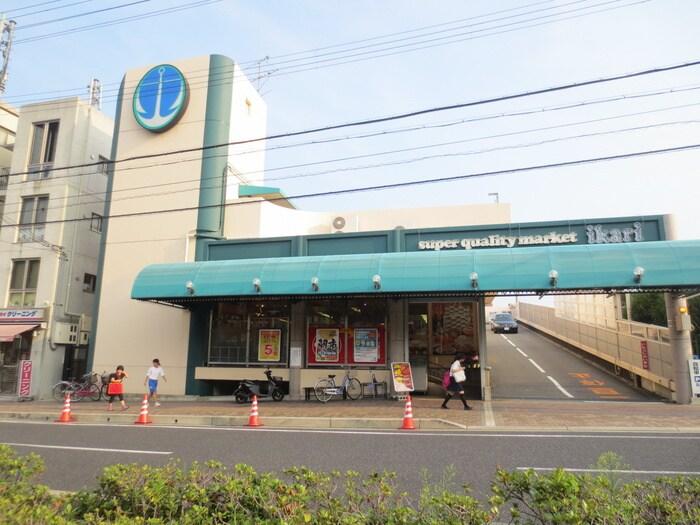 いかりスーパーマーケット(スーパー)まで260m