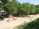樋之池公園(公園)まで270m