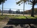 新福寺公園(公園)まで233m