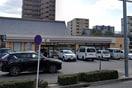 セブンイレブン名古屋泉3丁目店(コンビニ)まで255m