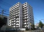 コスモテール吉塚(504)