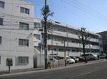 シャト-和田