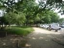 青葉公園(公園)まで596m※青葉公園