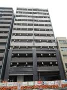 大阪メトロ長堀鶴見緑地線/松屋町駅 徒歩5分 12階 築7年の外観