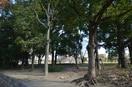 真田山公園(公園)まで1000m※真田山公園