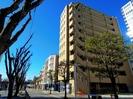 東海道本線/静岡駅 徒歩12分 9階 築13年の外観