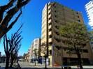東海道本線/静岡駅 徒歩12分 5階 築13年の外観