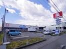 ウエルシア清水庵原店(ドラッグストア)まで1232m