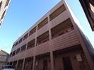 静岡鉄道静岡清水線/桜橋駅 徒歩5分 2階 築33年の外観