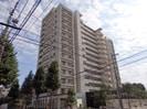 鹿児島市電2系統/市立病院前駅 徒歩7分 7階 築12年の外観