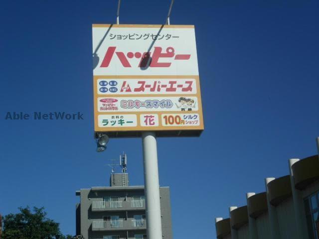スーパーエース30条店(スーパー)まで240m
