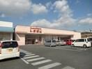 ファッションセンターしまむら城東店(ショッピングセンター/アウトレットモール)まで4415m