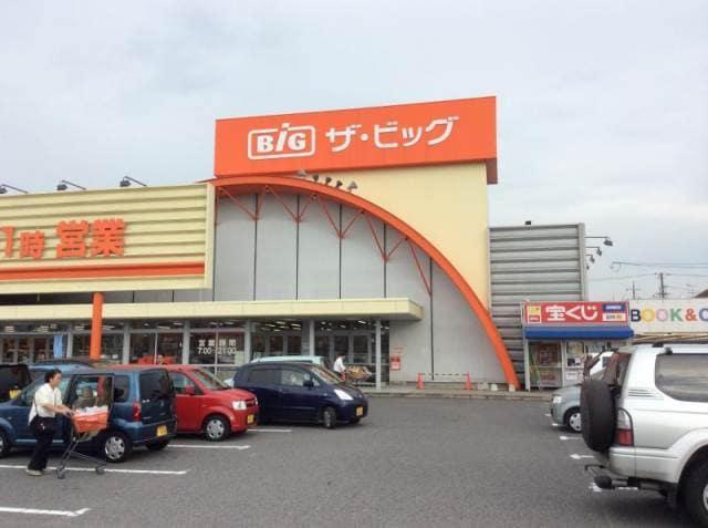 ザ・ビッグ平島店(電気量販店/ホームセンター)まで1018m