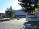北見市立美山小学校(小学校)まで662m