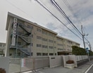 岡山市立横井小学校(小学校)まで705m