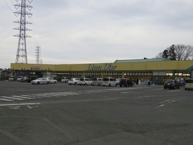 リオン・ドール高根沢店(スーパー)まで1241m