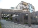 相鉄本線/星川駅 徒歩8分 2-3階 築12年の外観