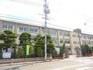 岡山市立鹿田小学校(小学校)まで445m