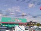 ドラッグコスモス福浜店(ドラッグストア)まで259m