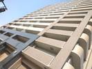 徳島線/佐古駅 徒歩7分 12階 築14年の外観