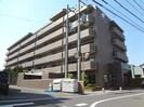 徳島市営バス/昭和町七丁目 徒歩4分 2階 築21年の外観