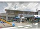 徳島市立富田保育所(幼稚園/保育園)まで75m