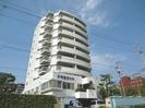 徳島市営バス/体育館前 徒歩3分 6階 築36年の外観