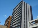 徳島線/徳島駅 徒歩12分 15階 築3年の外観