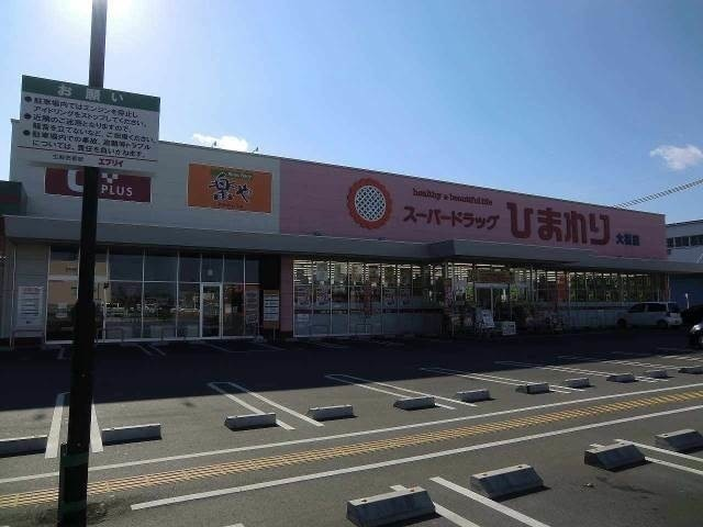 スーパードラッグひまわり津高店(ドラッグストア)まで752m