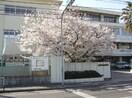私立岡山中学校(中学校/中等教育学校)まで405m