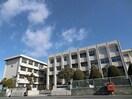富田保育園(幼稚園/保育園)まで307m