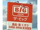 ザ・ビッグ津藤方店(ディスカウントショップ)まで905m