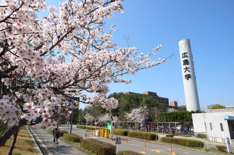 広島大学(大学/短大/専門学校)まで1900m