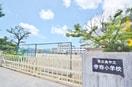 東広島市立寺西小学校(小学校)まで1300m