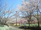 鏡山公園(公園)まで902m