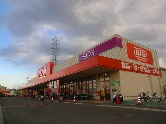 ザ・ビッグ奥田南店(スーパー)まで881m