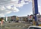 フレスポ高屋(ショッピングセンター/アウトレットモール)まで1561m