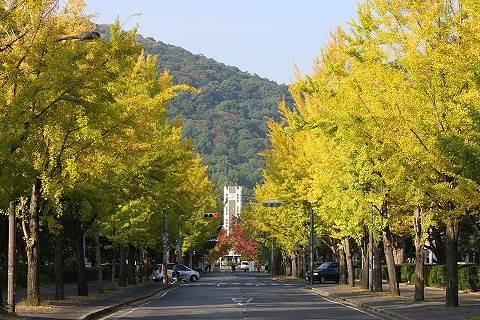 国立岡山大学医学部(大学/短大/専門学校)まで391m